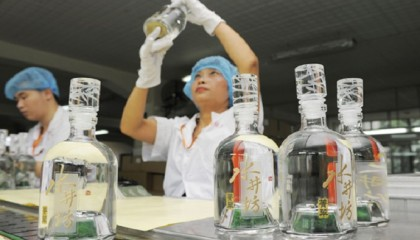 Baijiu Distiller in Sichuan Sees Heady Times Ahead